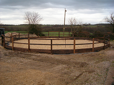 Lunging Ring