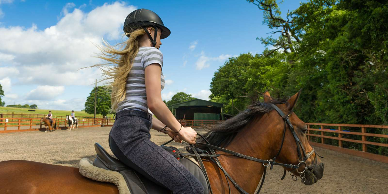 Horse Riding Tuition Devon