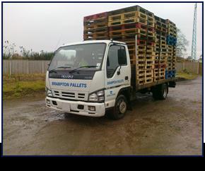 pallet truck holding pallets