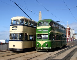 Tram Service