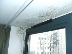 Condensation affecting windows caused by missing insulation