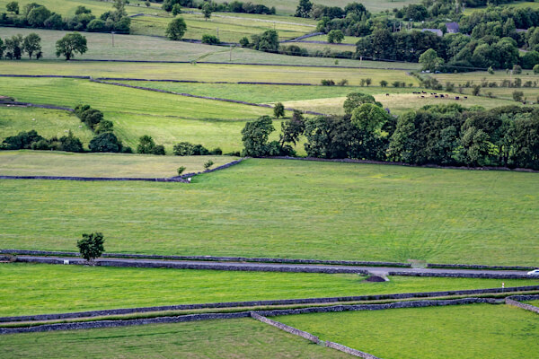 Fields with Walls as Boundaries
