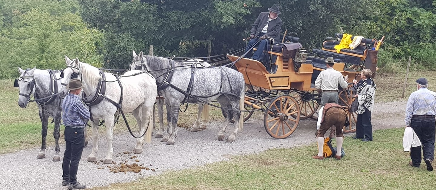 Stationary horse and carriage