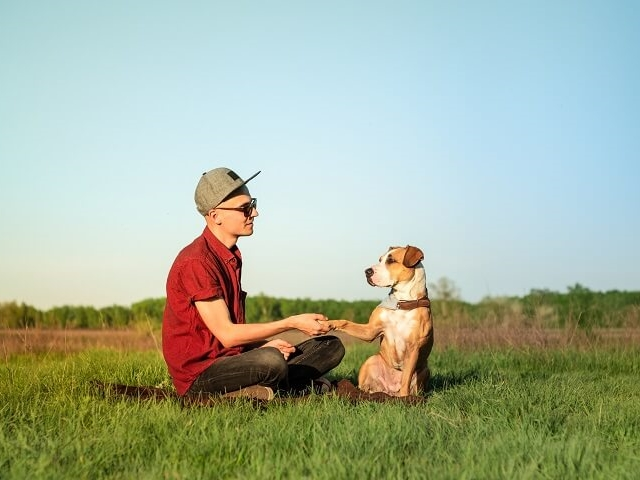 Dog and Owner In Field
