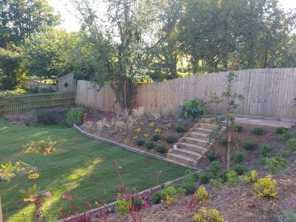A Modern Garden Surrounded by Shrubbery