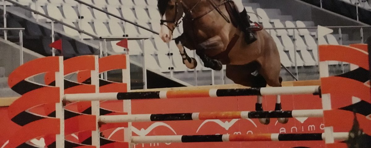 horse leaping over obstacle.
