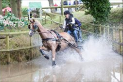 Race horse being lead through water