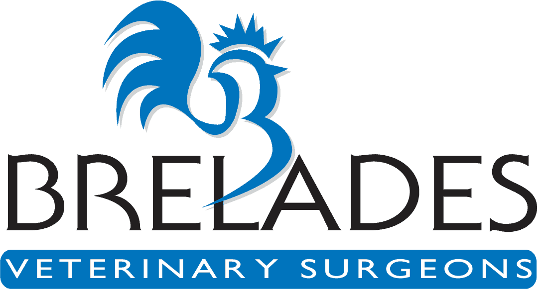 Brelades Vet Surgeons Logo