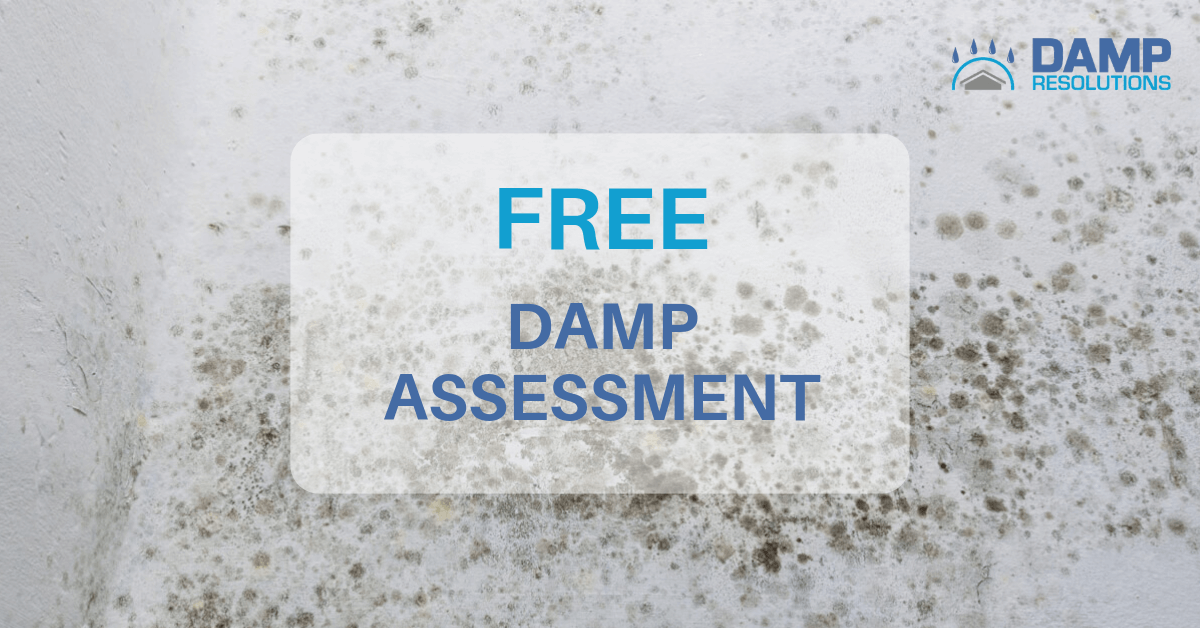 Free damp assessments