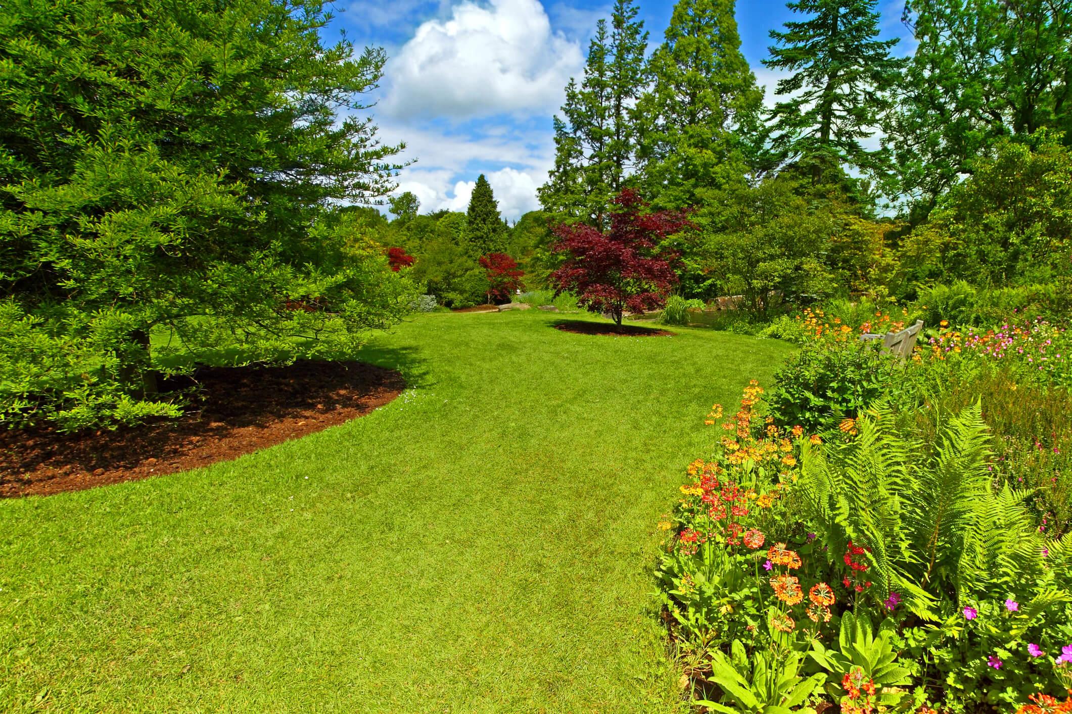 Garden landscaping, Srpingtime, on sunny day.