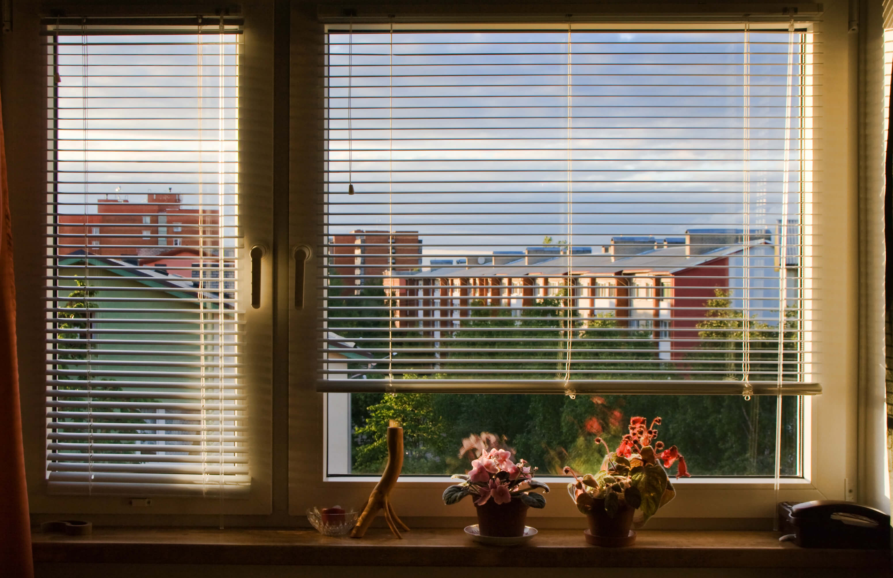 A view of buildings through venetian blinds