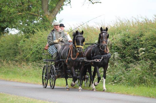 2 men on horse with carriage.