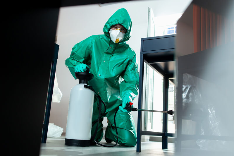Cleaning man fogging a room