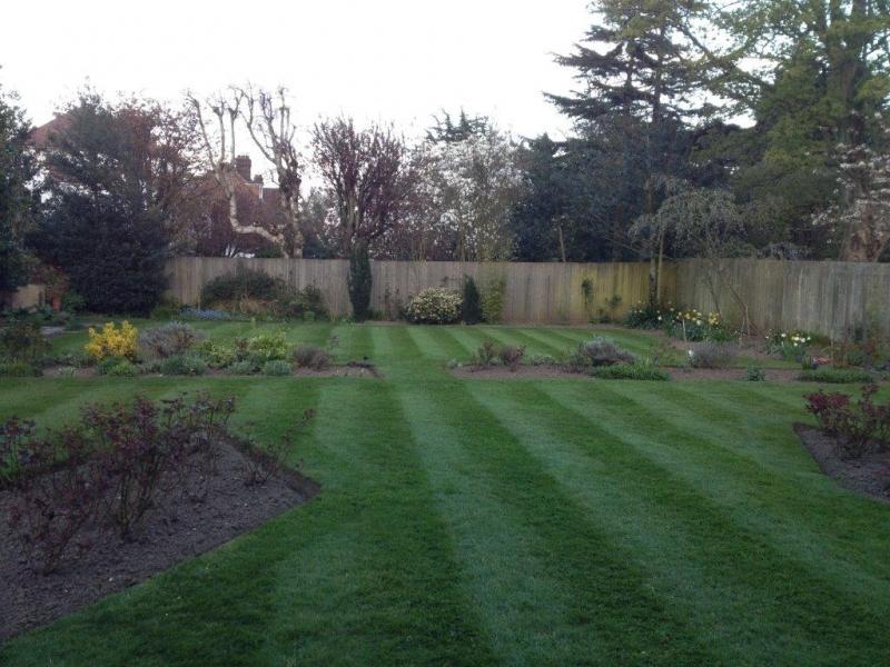 A Well Maintained Modern Garden.