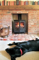 Dog laying infront of wood burner
