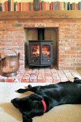 Dog laying infront of wood burner