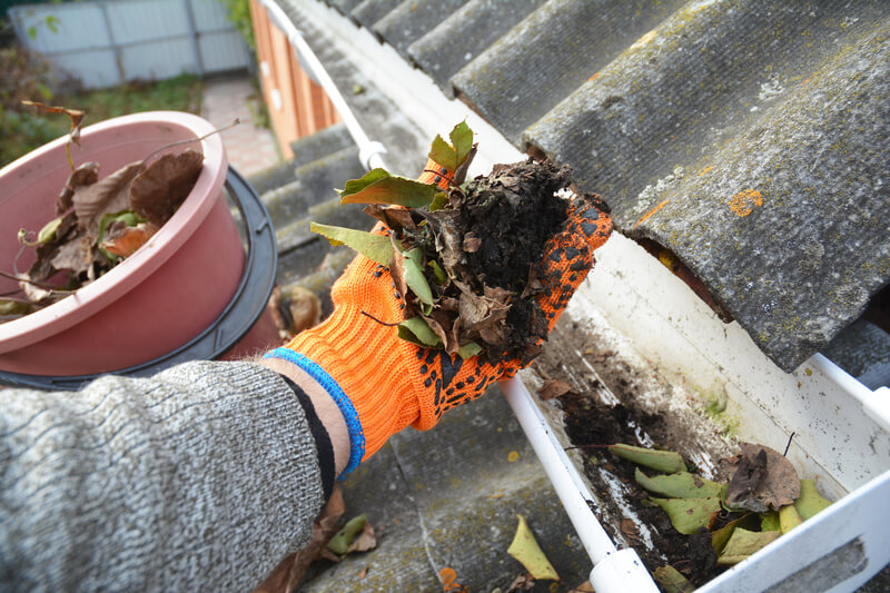 Rain Gutter Cleaning from Leaves in Autumn with hand