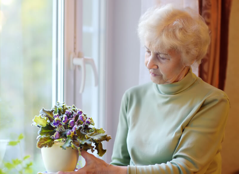 Elderly woman looking longingly at her bunched flowers next to the window