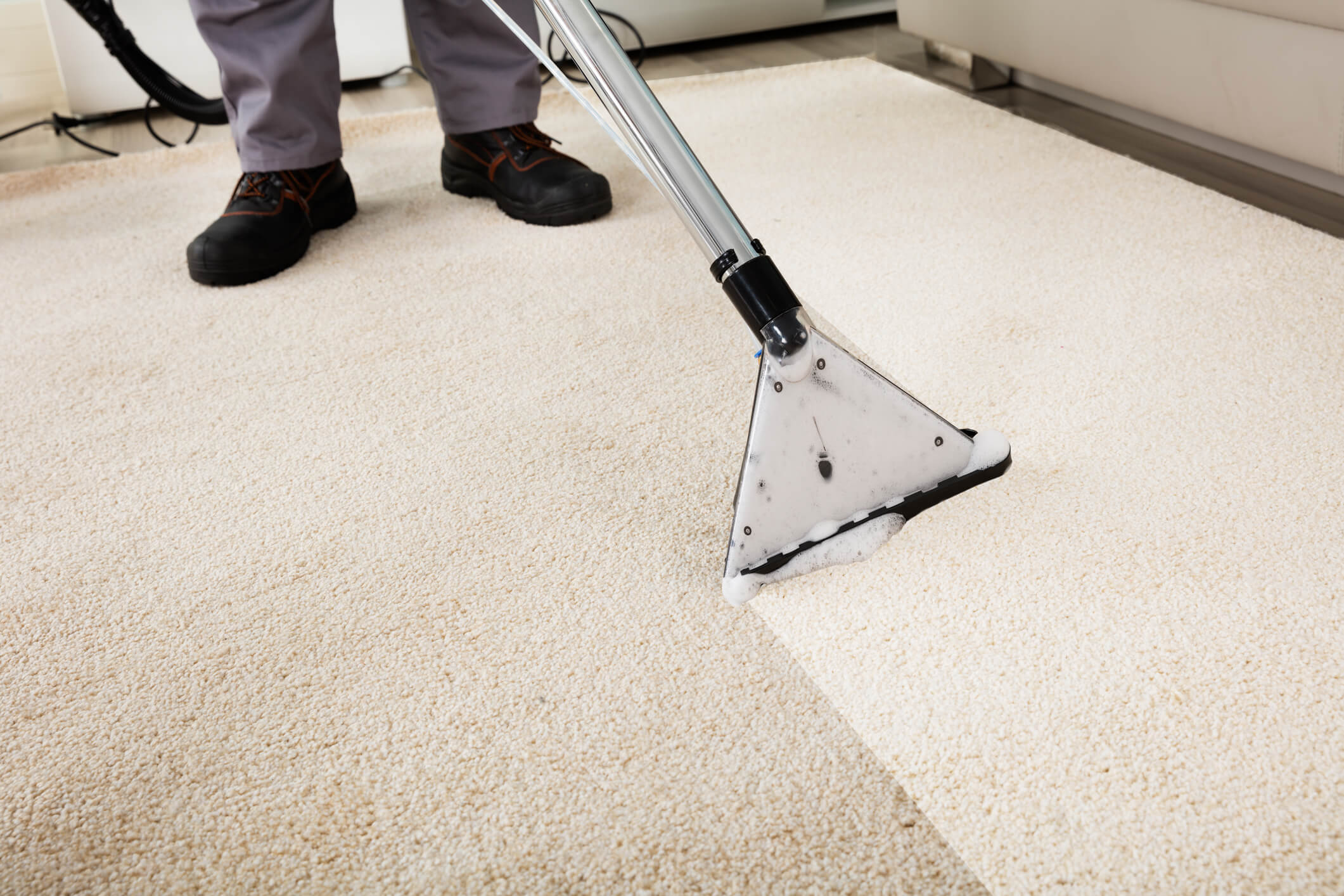 Carpet cleaning and treatments