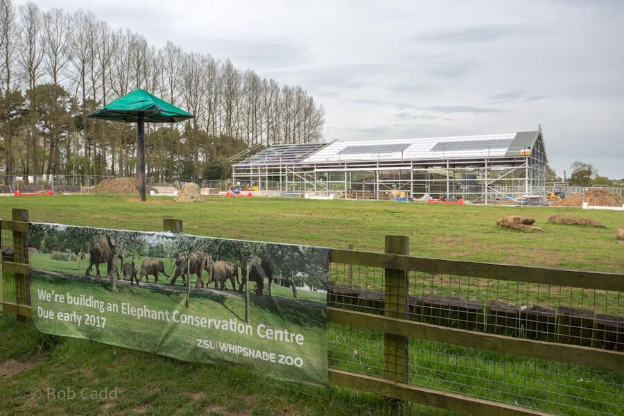 Progress photo of constructing Elephant Care Centre