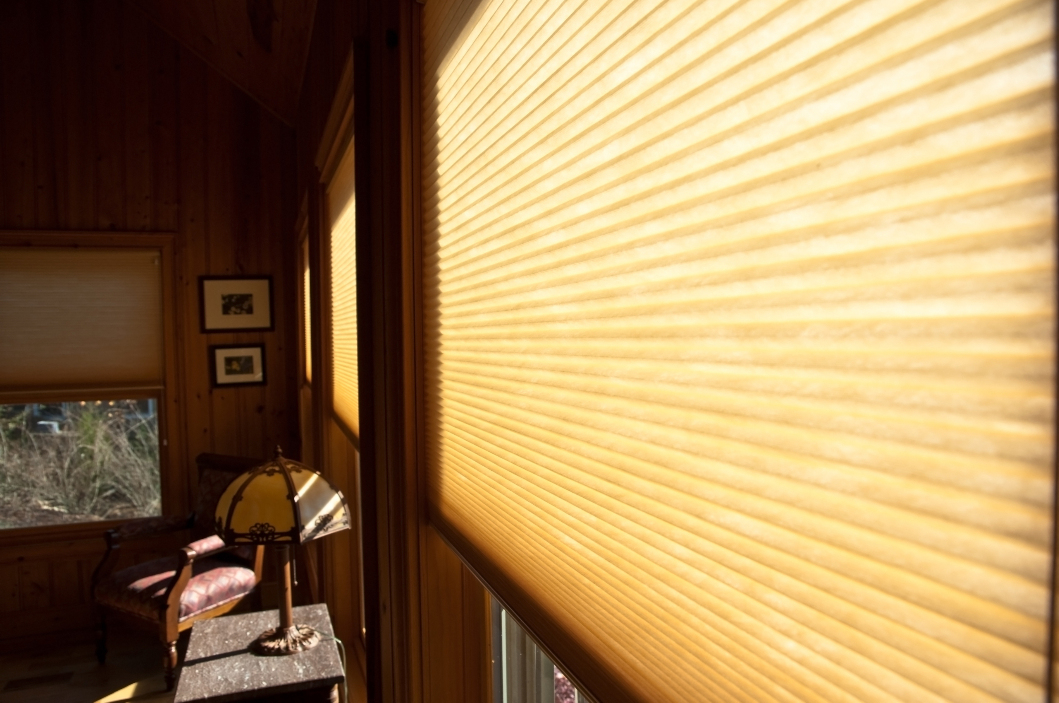 Window with Pleated Blinds