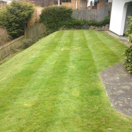 Well Cut Grass in a Back Garden