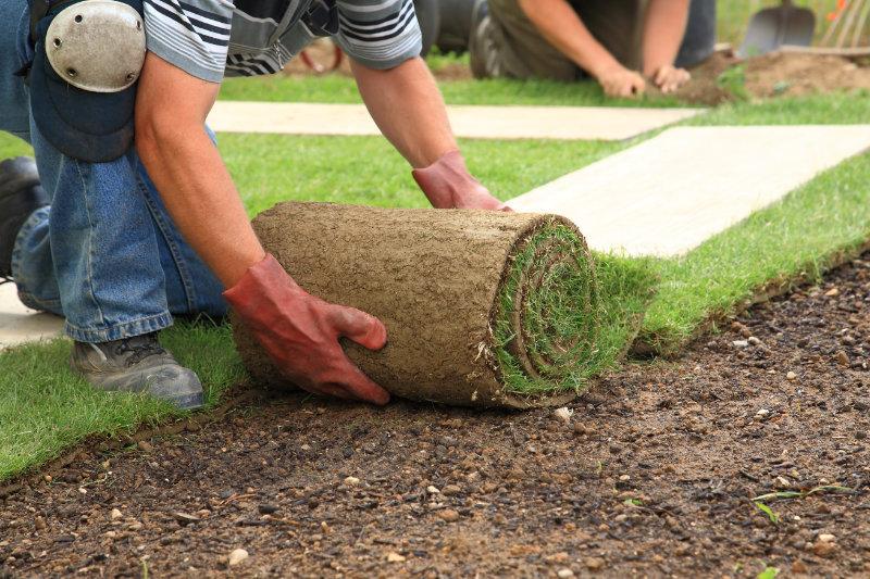 Turfing & Artificial Grass