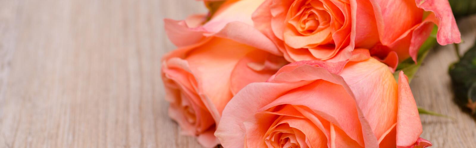 Three orange flowers of roses on wooden board