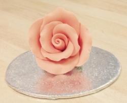 Peach 4.5cm Rosebud