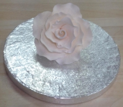 Ivory 7cm Rose