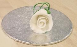 White 2.2cm Rosebud