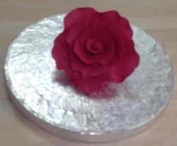 Fuschia 7cm Rose