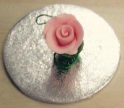 Shell Pink 2.2cm Rosebud