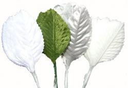 144 x satin leaves - White