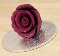 Burgundy 4.5cm Rosebud