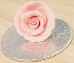 Shell Pink 3.5cm Rosebud