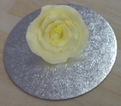Lemon 5cm Rosebud
