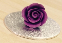 Cadbury's Purple Medium Rosebud
