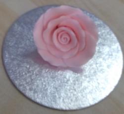 Shell Pink 5cm Rosebud