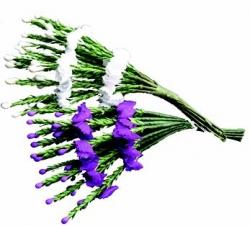 1 x 12 bunche heather spray - purple