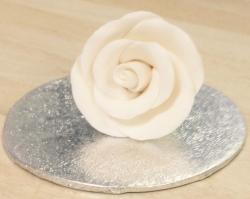 Cream 3.5cm Rosebud