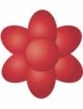 Paste Colour 25g- Poppy Red