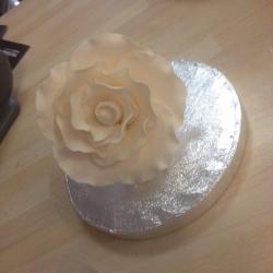 Large Rose Bud White 9cm