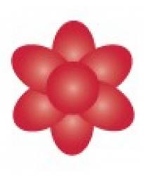 Paste Colour 25g - Scarlet