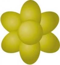 Paste Colours 25g - Gooseberry