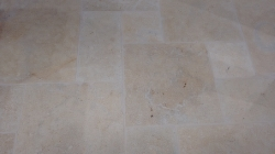 Persian Gold Limestone