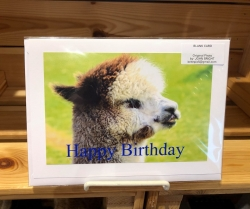 Hermes Happy Birthday Card