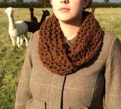 Bridget Cowl in Chunky Ester