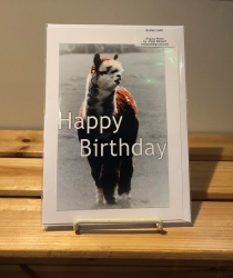 Theodore Happy Birthday Card
