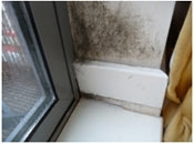 Tenant blamed for mould growth